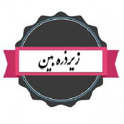 <strong>قواعد</strong> <strong>بازی</strong> در <strong>قالب</strong> <strong>ومضمون</strong> <strong>شعر</strong>